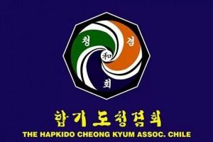 HAPKIDO CHEONG KYUM (Enlace)www.hapkidockachile.com